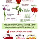 Выбираем цветы к празднику