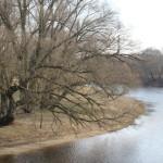Дождь и мокрый снег ожидаются в Беларуси в предстоящие выходные