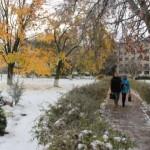 Коммунальная служба Ляховичского района готова к снегопадам