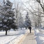Снег под контролем