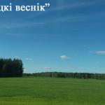 Теплая и дождливая погода ожидается в Беларуси на этой неделе