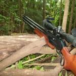 Ляхавічане стреляют метко