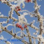 Морозы до 28 градусов ожидаются в Беларуси на этой неделе